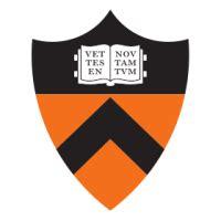 Princeton senior thesis funding